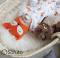 Комплект на выписку летний  baby Foxy